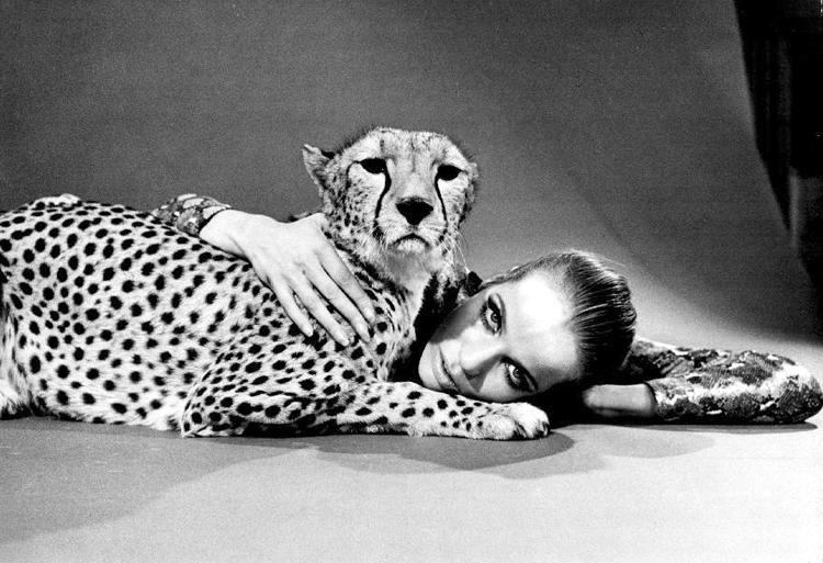 Verushka with cheetah