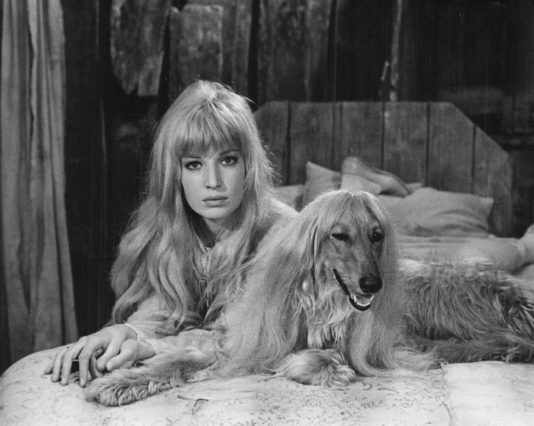 Monica Vitti as Boccadoro in La cintura di castità