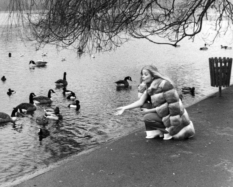 Ewa Aulin feeding duck in London